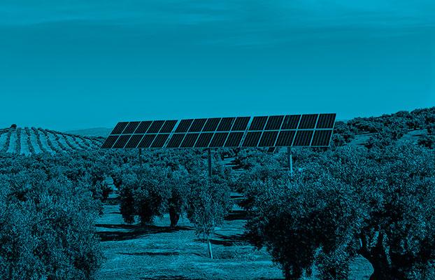Alium Technologies. Autoconsumo en el medio rural.